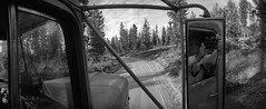 Widelux's first dump truck ride! (ASHLANDJET) Tags: film widelux f7 swinglenscamera kodak trix400 35mm analog blackandwhite monochrome vintagecamera vintagetruck 1970 kenworth w924 gilchrist oregon selfie wideangle panorama