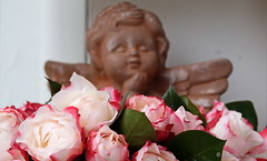 Sonntags auf Blumen gebettet.... (Sockenhummel) Tags: roses flower fuji finepix fujifilm rosen engel flowerbunch xt10 rosenstraus fujixt10