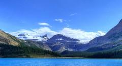 Bow Lake, Banff National Park, Alberta Canada (renedrivers) Tags: bowlake banffnationalpark albertacanada rchan415 renedrivers canada alberta rockymountain nature landscapes