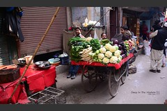 traveler : Deep In The Markets (tofu_minx) Tags: india delhi city hardlife poverty asia travel color