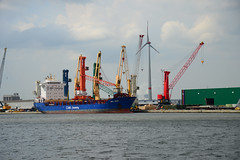 BBC Oder (DST_8545) (larry_antwerp) Tags: bbcoder zuidnatie 9508316 antwerp antwerpen       port        belgium belgi          schip ship vessel