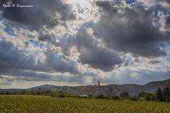 Bocairent (Copboc) Tags: bocairent copboc comunitatvalenciana comunidadvalenciana nubes nuvols valencia girasol sol sun clouds cielo sky sunflowers