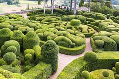 Jardins suspendu de Marqueyssac (Robby68) Tags: vert marqueyssac jardin dordogne nature france soir suspendu
