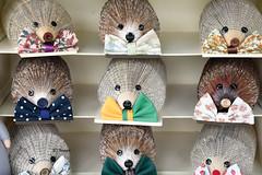 Hedgehog Display (EJ Images) Tags: corton classiccarshow lowestoftclassiccarrally lowestoftclassiccarshow carshow lowestoft suffolk england eastanglia uk nikon d750 nikond750 nikonslr nikondslr slr dslr 24120mmlens 2016 ejimages nef hedgehogs hedgehog art artwork artcraft craft craftwork design dsc568701