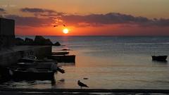 Poesia d'agosto (Angelo Trapani) Tags: sole mare cielo alba sunrise atmosfera luce colori porto molo barche pescatori palermo serasmo