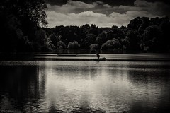 Out on the water (Anthony Plancherel) Tags: buckinghamshire category england landscape marsworthreservoir places travel monochrome blackandwhite whiteandblack bw english british britain greatbritain uk unitedkingdom water sky trees clouds cloudysky reflections reflection lake marsworthlake canon1585mm canon70d canon rural countryside landscapephotography fisherman boat transport