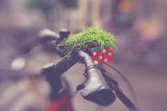 all natural (Stadt_Kind) Tags: bike bikeh rad fahrrad bicycle ride bokeh bokehlicious bokehaddicts dof doflicious depthoffield schrfentiefe
