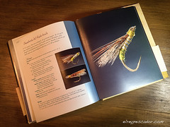 Manuscrito de Astorga (eRdAvE) Tags: libro book flytying spain astorga