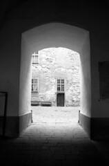 At the castle (Nils Kristofer Gustafsson) Tags: blackandwhite bnw ishootfilm retro rollei 400s lomo lomography sweden rebro keepfilmalive filmisnotdead filmphotography film rodina adonal konica
