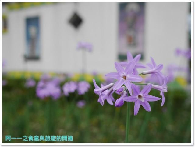 花蓮鯉魚潭螢火蟲賞蝴蝶青陽農場攝影花蓮旅遊image019