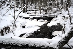 Brook from Kolmoislammit to Pitkjrvi in snowy forest (Espoo, 20120114) (RainoL) Tags: winter snow forest espoo finland geotagged january u brook fin 2012 uusimaa nyland esbo 201201 20120114 brooksofnuuksio geo:lat=6029220400 geo:lon=2454205200