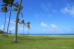 04172015_018_ (ALOHA de HAWAII) Tags: hawaii oahu kualoaregionalpark