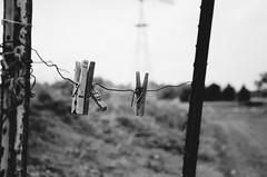 pinned (Jenlynnifer94) Tags: blackandwhite bw blur nikon pins clothespins pinned
