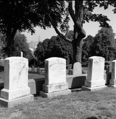 Leavitts (triebensee) Tags: blackandwhite film monochrome cemetery brooklyn zeiss self memorial day greenwood 11 d76 hasselblad carl developed f28 planar 80mm 500cm 2015 fujineopanacros100 fujifilmneopanacros100 brooklynian