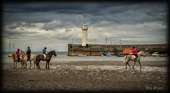 The Fallout ? (D.k.o.w) Tags: horses lighthouse seascape canon landscape exercise harbour pony 7d northernireland rider trot gallop ulster mkii donaghadee countydown irishsea sundayevening