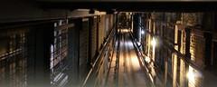 Elevator shaft (MarSolo2) Tags: elevator tehran iran shaft