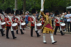 Going Up the Mall (CoasterMadMatt) Tags: city colour london westminster mall band event marching marchingband themall troopingthecolour trooping cityofwestminster london2016 troopingthecolour2016