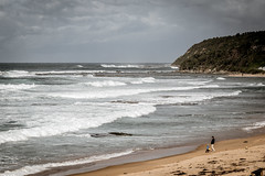 The power and beauty of the ocean! (Merrillie) Tags: nikon cinematic nature water d5500 nswcentralcoast newsouthwales sea nsw beach centralcoastnsw shellybeach photography landscape outdoors waterscape waves centralcoast seascape australia winter
