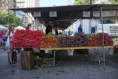 DSC04635 (Melissa808) Tags: searchhawaii newyork jonathanwaxman unionsquaregreenmarket