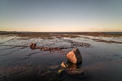 M1150828.jpg (meerecinaus) Tags: longreef beach
