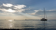 Vladivostok 37 (Alexxx1979) Tags: 2015 amurbay august bay city primorskykrai russia sea seaofjapan summer vladivostok yacht
