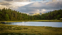 Stillness (PixPep) Tags: tynset norge norway landscape nature pixpep