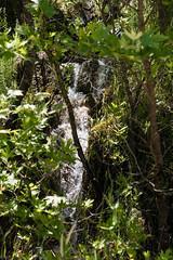 waterfall 2 (photographISO) Tags: nikon ioannina epirus