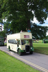 IMGP3881 (Steve Guess) Tags: park uk england bus k vintage bristol coach brighton open top hove hampshire historic southern vectis topless gb alton topper anstey watercressline hants midhants