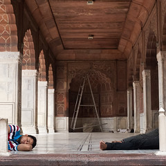 'Top & Tail' (Two Dragons - @robthomasphoto) Tags: 2016 agra asia culture delhi gate1 gate1tours goldentriangle india jaipur june mughal raj sightseeing sites subcontinent tour tourism tourist heat multicultural premonsoon travel robcolinthomas robthomasphotography