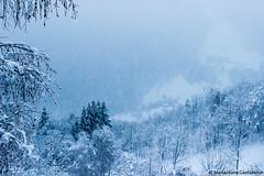 Snowfall (LadyInBlack1987) Tags: snow mountans landscape paesaggio gerola valtellina neve monocromo cielo wilderness italianlandscape