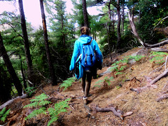 On the way home through the pine trees in the green side of the canyon (angeloska) Tags: ikaria may hikingtrails opsikarias aegean greece signage      chalares upperchalares dipotama ratsos   swimmingholes pines rahes girl hiker prettygirl