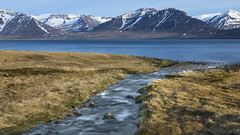 Iceland's rivers and fjords (lunaryuna) Tags: iceland northwesticeland westfjords roundtrip fromholmaviktopatreksfjordur journey trip travel ontheroad landscape panorama fjord mountainrange river waterways thecycleofwater spring season seasonalchange nature beauty lunaryuna