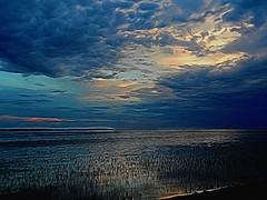 Early morning glow (Zingarella1) Tags: digitalmanipulation sunup water grass sky clouds