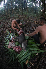 Guilherme.Gnipper-0348 (guilherme gnipper) Tags: picodaneblina yaripo yanomami expedio expedition cume montanha mountain wild rainforest amazonas amazonia amazon brazil indigenous indigena people