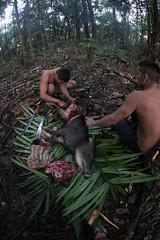 Guilherme.Gnipper-0348 (guilherme gnipper) Tags: picodaneblina yaripo yanomami expedio expedition cume montanha mountain wild rainforest amazonas amazonia amazon brazil indigenous indigena people