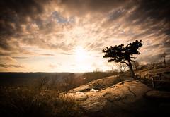 Golden Sunset (Dan NYNJ) Tags: sunset cloud newyork color landscape nikon rocks bearmountain hudsonriver hudson goldenhour stonypoint rocklandcounty perkinsobservatory nikon1635f4 nikond750 perkinsobsrvatory