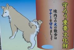 Pipican? (Avantime Jacobus) Tags: park art tokyo kyoto asia freak osaka nara japon mie cartell friki japo curiosos