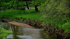 Wilson's Creek (Adventurer Dustin Holmes) Tags: water creek midwest stream missouri streams ozarks creeks 2015 wilsonscreek wilsonscreeknationalbattlefield nationalbattlefields