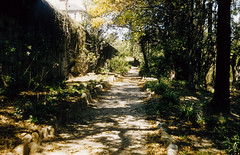 Path from central block to Female 6