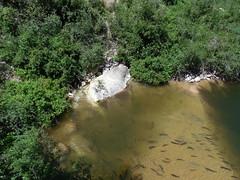 """The Rise"" (jimmywayne) Tags: statepark river wyoming sinks lander fremontcounty sinkscanyon popoagieriver"