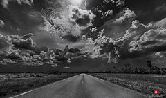 Florida Life: Martin County 708 (Thncher Photography) Tags: sony a7r2 sonya7r2 ilce7rm2 zeissfe1635mmf4zaoss fx fullframe monochrome bw blackwhite scenic landscape sky clouds nature outdoors storm farming sugarcane cattle bridgeroad martincounty708 hobesound martincounty florida southeastflorida