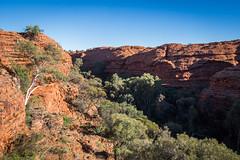 Kings Canyon Garden of Eden Northern Territory-3