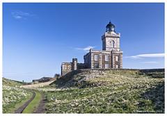 DS0D8110-Isle-of-May-Lighthouse (duncancooke.happydayz) Tags: lighthouse isle may scotland robert stevenson gothic tower