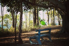 Floating (phoenixfelices) Tags: park trees photography photo nikon balloon australia brisbane qld queensland calmness shorncliffe nikonlove thisisqueensland