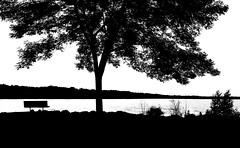 Evening View in Black and White  ...Explored 7-16-16 ! (imageClear) Tags: bw lake nature beauty wisconsin contrast bench landscape aperture nikon flickr branches sheboygan overlook photostream northpoint 80400mm d600 imageclear
