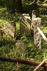 IMG_7620 (RARstudios) Tags: newhopecemetery abandoned cemetery rarstudios newhope