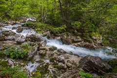 One Scene from the Soa Source - EXPLORED 22/8/16 Thanks! (danjama) Tags: socariver soca socavalley socasource river source mountains waterfalls longexposure smooth water trees forest green hike adventure travel slovenia trenta triglav julianalps bovec bled bohinj lake