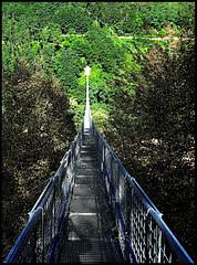 Ponte Sospeso (ale210708) Tags: pontesospeso ponte bridge toscana tuscany italia italy abetone montagna mountain