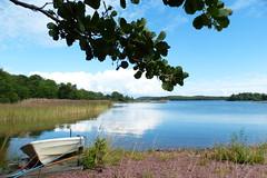 Sommaridyll (evisdotter) Tags: sommaridyll summer boat bt water reflections reed strand sooc nature land