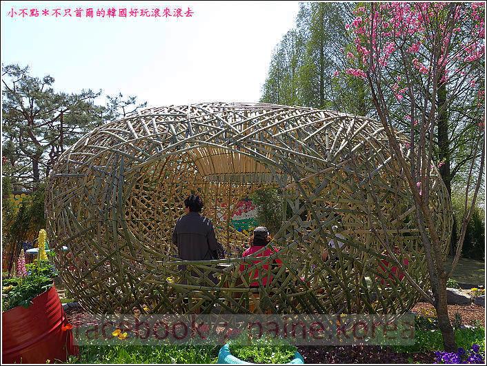 高陽國際花卉博覽 (33).JPG